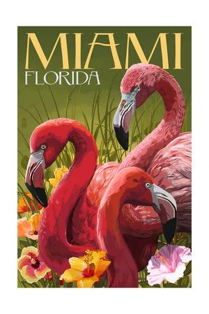 Miami, Florida - Flamingos-Lantern Press-Framed Art Print