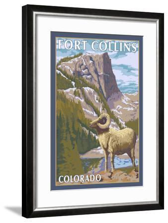 Fort Collins, Colorado - Big Horn Sheep-Lantern Press-Framed Art Print