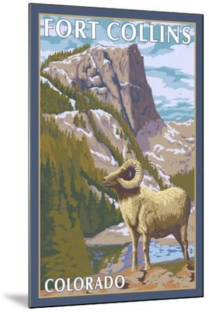 Fort Collins, Colorado - Big Horn Sheep-Lantern Press-Mounted Art Print