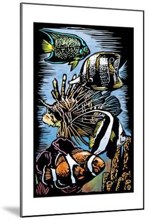 Tropical Fish - Scratchboard-Lantern Press-Mounted Art Print