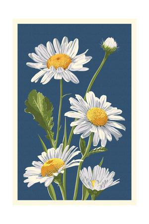 Daisy-Lantern Press-Framed Art Print