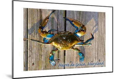 Harve De Grace, Maryland - Blue Crab on Dock-Lantern Press-Mounted Art Print