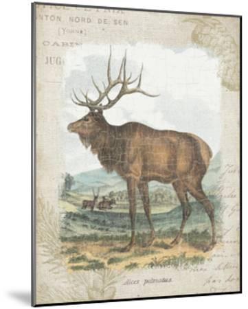 Woodland Stag II-Hugo Wild-Mounted Art Print