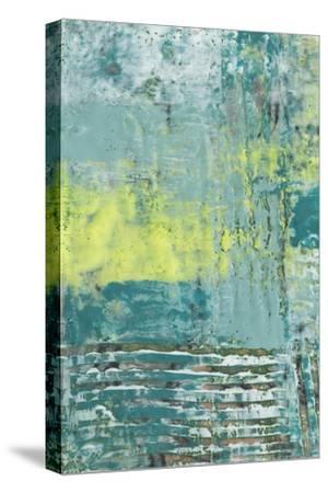 Linear Texture I-Jennifer Goldberger-Stretched Canvas Print