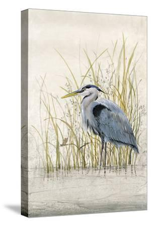 Heron Sanctuary II-Tim O'toole-Stretched Canvas Print