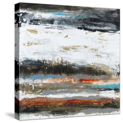 Evade-Sisa Jasper-Stretched Canvas Print
