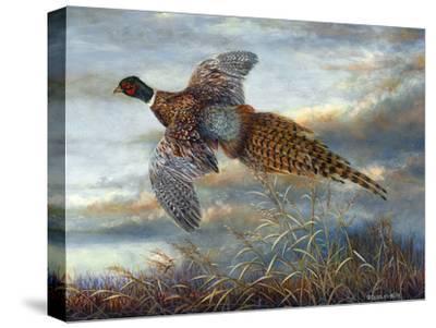 Taking Flight-Carolyn Mock-Stretched Canvas Print