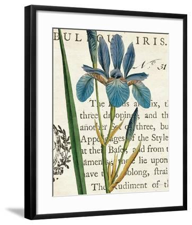 Iris Letter-Sue Schlabach-Framed Art Print