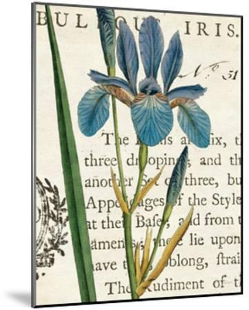 Iris Letter-Sue Schlabach-Mounted Art Print
