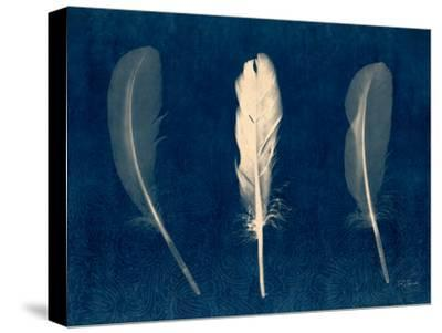 Plumes and Quills 2-Dan Zamudio-Stretched Canvas Print