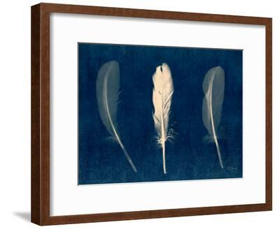 Plumes and Quills 2-Dan Zamudio-Framed Premium Giclee Print