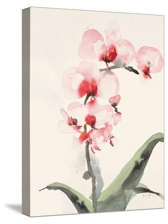 Morning Orchid 2-Karin Johannesson-Stretched Canvas Print