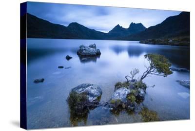Cradle Mountain National Park, Tasmania, Australia. Dove Lake at Sunrise-Matteo Colombo-Stretched Canvas Print
