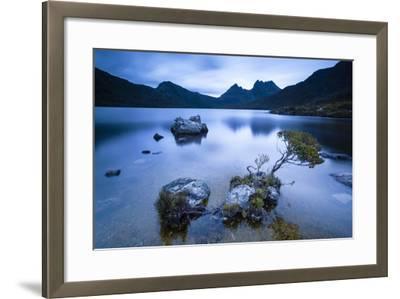 Cradle Mountain National Park, Tasmania, Australia. Dove Lake at Sunrise-Matteo Colombo-Framed Photographic Print