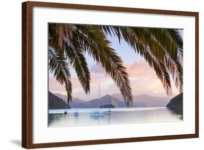 Yachts Anchored on the Idyllic Queen Charlotte Sound, Marlborough Sounds, South Island, New Zealand-Doug Pearson-Framed Photographic Print