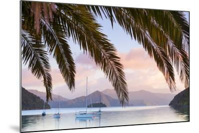 Yachts Anchored on the Idyllic Queen Charlotte Sound, Marlborough Sounds, South Island, New Zealand-Doug Pearson-Mounted Photographic Print