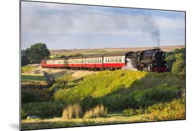 United Kingdom, England, North Yorkshire, Goathland-Nick Ledger-Mounted Photographic Print