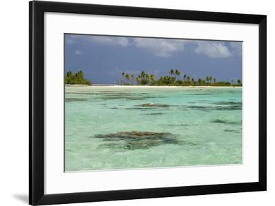 Palm Trees Along a Tropical Beach, and Coral Heads Visible Through Crystal Clear, Blue Water-Sergio Pitamitz-Framed Photographic Print