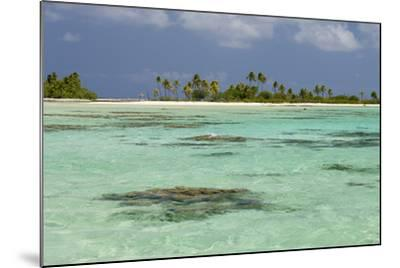 Palm Trees Along a Tropical Beach, and Coral Heads Visible Through Crystal Clear, Blue Water-Sergio Pitamitz-Mounted Photographic Print