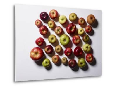 Heirloom Varieties of Apples-Rebecca Hale-Metal Print