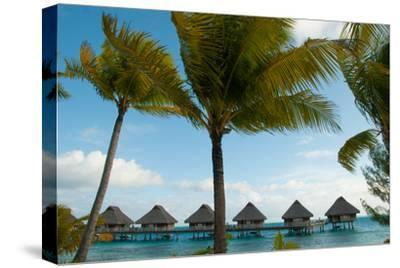 Palm Trees and Vacation Cottages over Water on Bora Bora-Karen Kasmauski-Stretched Canvas Print