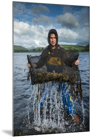 An Oyster Farmer Pulls a Bag of Pacific Oysters Out of the Cold Waters-Jim Richardson-Mounted Photographic Print
