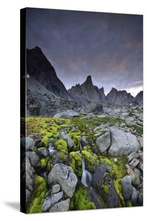 A Mountain Stream Coursing Through Moss-Covered Boulders-Keith Ladzinski-Stretched Canvas Print