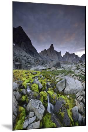 A Mountain Stream Coursing Through Moss-Covered Boulders-Keith Ladzinski-Mounted Photographic Print