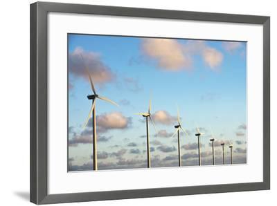 A 150 Feet Tall Wind Turbines Just Outside Arikok National Park-Mauricio Handler-Framed Photographic Print