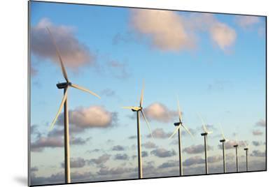 A 150 Feet Tall Wind Turbines Just Outside Arikok National Park-Mauricio Handler-Mounted Photographic Print