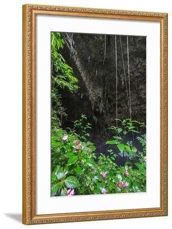 A Green Lush Jungle Entrance to the Grotto Azul Cave System in Bonito, Brazil-Alex Saberi-Framed Photographic Print