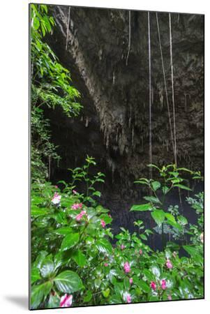 A Green Lush Jungle Entrance to the Grotto Azul Cave System in Bonito, Brazil-Alex Saberi-Mounted Photographic Print