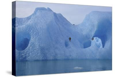 A Climber Navigates Tricky Terrain on a Blue Iceberg Off the Coast of Greenland-Keith Ladzinski-Stretched Canvas Print