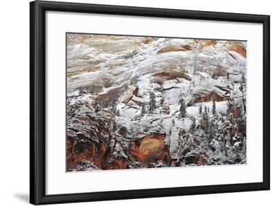 Snow-Covered Evergreen Trees, Cliffs, and Rock Formations in a Desert-Keith Ladzinski-Framed Photographic Print