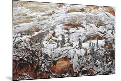 Snow-Covered Evergreen Trees, Cliffs, and Rock Formations in a Desert-Keith Ladzinski-Mounted Photographic Print