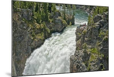 Tourists Watch Yellowstone River Plunge over Upper Yellowstone Falls-Gordon Wiltsie-Mounted Photographic Print