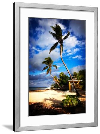 Palm Trees Sway over a Beach in the Cayman Islands in the Caribbean-Chris Bickford-Framed Photographic Print