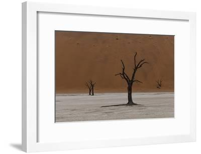 A Surreal Landscape of Dead Trees in a Clay Pan and Towering Sand Dunes-Jonathan Irish-Framed Photographic Print