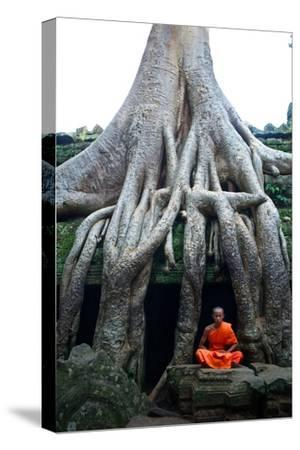 A Theraveda Buddhist Monk at the Ta Prohm Temple in the Angkor Complex-Kike Calvo-Stretched Canvas Print