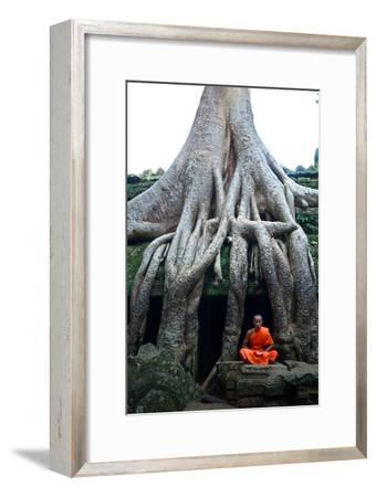 A Theraveda Buddhist Monk at the Ta Prohm Temple in the Angkor Complex-Kike Calvo-Framed Photographic Print