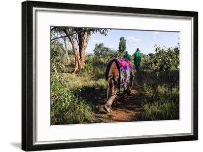 An Orphaned African Elephant with a Sleeping Blanket Follows a Carer Through the Forest-Jason Edwards-Framed Photographic Print
