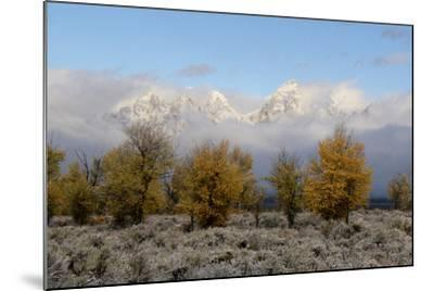 Clouds Clear from the Tetons after a Fall Storm-Barrett Hedges-Mounted Photographic Print