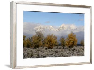 Clouds Clear from the Tetons after a Fall Storm-Barrett Hedges-Framed Photographic Print