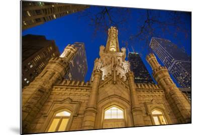 The Old Water Tower and Chicago Skyline in 2013-Richard Nowitz-Mounted Photographic Print
