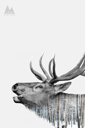 Deer-PhotoINC-Framed Art Print