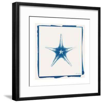 Cyan Starfish-Christine Caldwell-Framed Premium Giclee Print