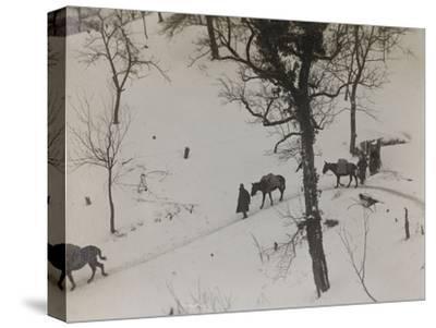 Transport of Supplies During the First World War-Luigi Verdi-Stretched Canvas Print