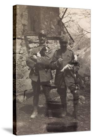 Free State of Verhovac-July 1916: Italian Soldiers with the Goats in Arm in Val D'Aupa--Stretched Canvas Print