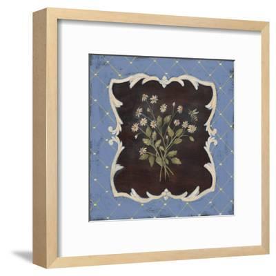Sweet Chamomile-Jo Moulton-Framed Art Print