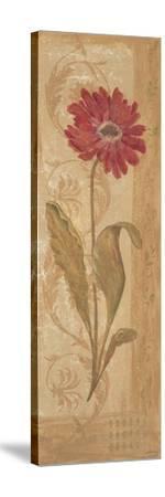 Evening Dahlia-Jo Moulton-Stretched Canvas Print